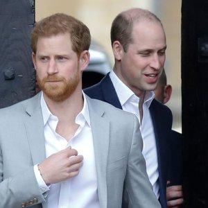2021-ieji metai atneš taiką? Atskleidė netikėtų detalių apie princų Harry ir Williamo dramą