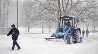 Sniegas (nuotr. Fotodiena.lt/Audriaus Bagdono)