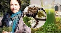 Kelmės rajone gyvenanti žolininkė Kristina Šilinskienė moko iš laukinių augalų pasigaminti maistą, sirupus, kosmetiką... (nuotr. asm. archyvo) (tv3.lt fotomontažas)