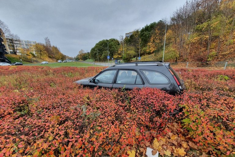 Vilniuje – neeilinė avarija: nesuvaldęs automobilio įlėkė į krūmus (nuotr. Broniaus Jablonsko)